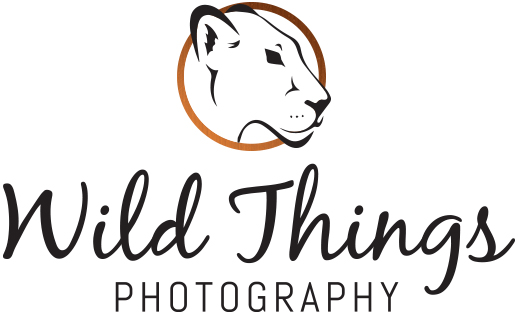 Wildlife Photography for Home, Office and Gifts